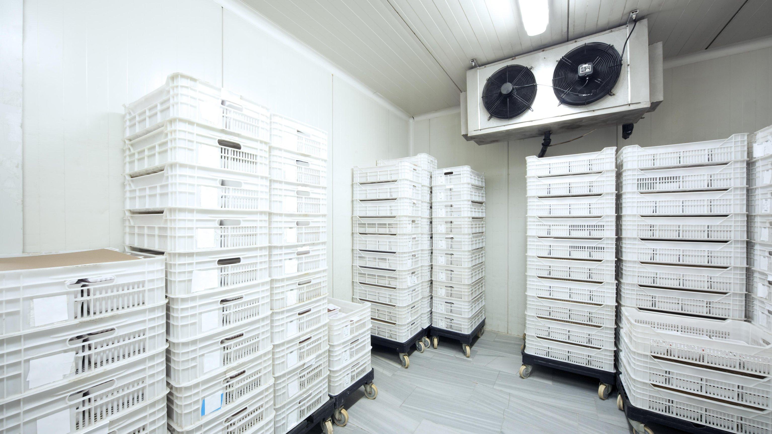Stockfoto: Calvatis Reinigung und Desinfektion von Lebensmitteltransportbehältern und Lastträgern - © istock.com / Lebazele